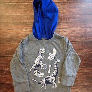 Dinosaur Bones Shirt Hoodie